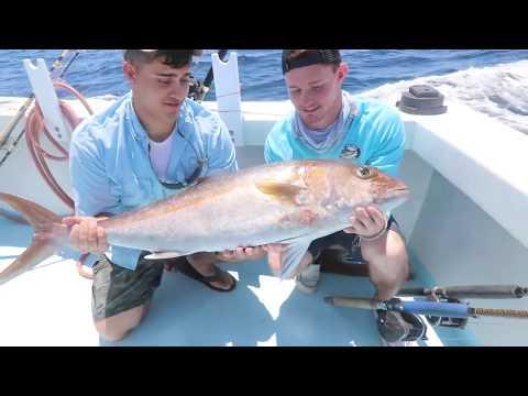 Destin Florida Charter Fishing, Backlash Charters