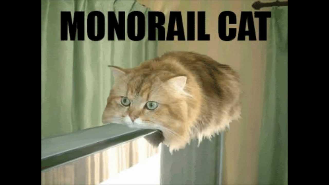 Monorail Cat Youtube