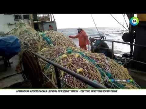 Рыбопромысловые суда, их типы и технические данные Форум