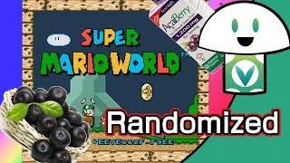 [Vinesauce] Vinny - Mario World Randomizer (2nd run)(Fan Edit)