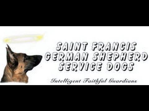 Saint Francis German Shepherd Service Dogs