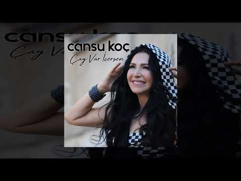 Cansu Koç - Hadi Unutsun (Official Audio)