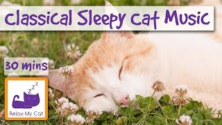 Classical Violin Music for Cats and Kittens! The Ultimate Soothing Song for Cats!