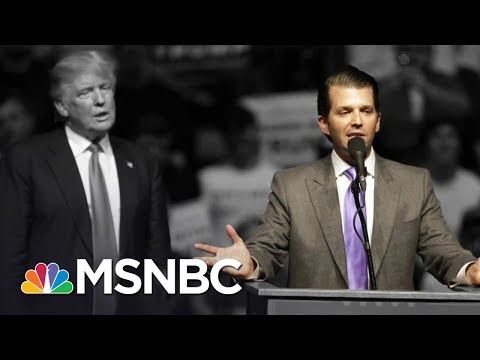 Thumbnail: White House In Chaos After Donald Trump Jr. Releases Emails | The 11th Hour | MSNBC