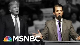 White House In Chaos After Donald Trump Jr. Releases Emails | The 11th Hour | MSNBC thumbnail