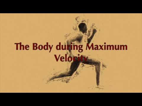 Developing Speed: For All Ages: Maximum Velocity