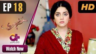 Hoor Pari - Episode 18 | Aplus Dramas | Alizeh Shah, Ammara Butt, Usman Butt | Pakistani Drama