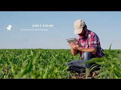 Precision Ag Software – FARMserver – Farmer Owned Data