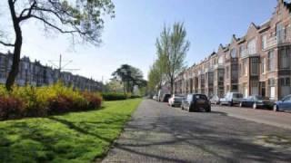 In Den Haag is een Laan - Conny Vandenbos