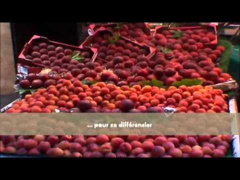 Ctifl la mise en scene des fruits et legumes les - Fruit ou legume en i ...