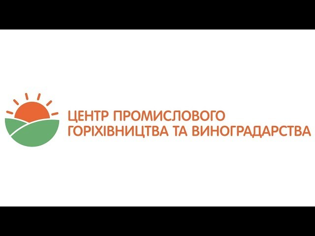 Привитые саженцы грецкого ореха 2018