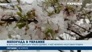 видео После выходных Украину засыпет снегопадом