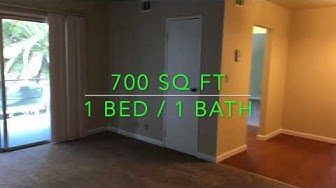 Sunnyvale Apt For Rent - 1 Bed 1 Bath - by Property Management in Silicon Valley