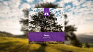☯ Fantasiereise Baum ∣ Deutsch - Meditation ∣ Fantasiereisen und mehr