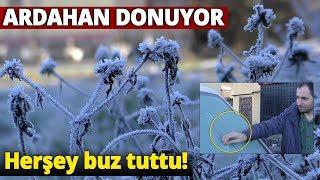 Ardahan'da Soğuk Hava Araçların Camlarında Buzlanma Oluşturdu