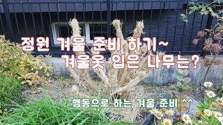 겨울전에 정원에서 해야 하는 일은?   /조경/월동준비…