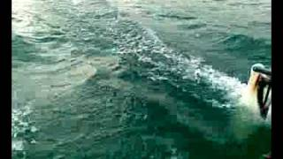 dart 16 catamaran  seyhan lake
