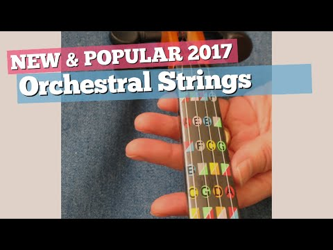 Orchestral Strings Parts, Top 10 Collection // New & Popular 2017