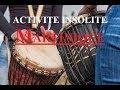 ACTIVITE INSOLITE MARTINIQUE | 38 | « Les maîtres du Bèlè à sainte marie »