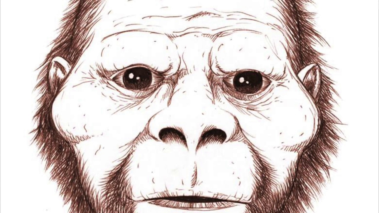 Cryptid BROTHERS!, Sasquatch Dogman Encounters Episode 37