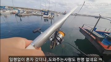 [바다낚시]강릉항 내항 낚시할땐 뜰채가 필수입니다.뜻밖의 대물출현/fishing