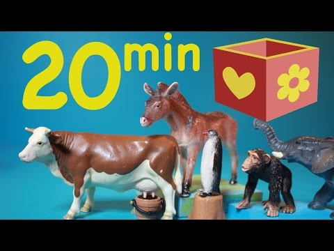Farm animals videos |  Zoo animals | Bellboxes Collection | 20 min