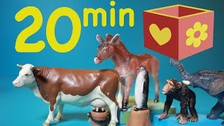 Farm animals videos    Zoo animals   Bellboxes Collection   20 min