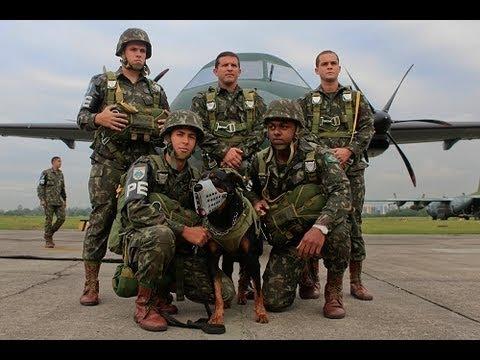 CANÇÃO DE TFM - Cães de Guerra preparar - YouTube ff8b46b6af7