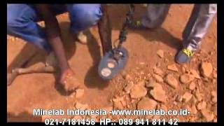 www.minelab.id  Kisah Sukses Detektor Emas. Mendeteksian emas secara mudah.