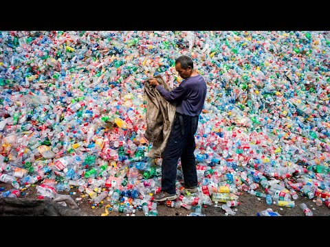 Scientists explain how plastic-eating enzyme can help fight pollution