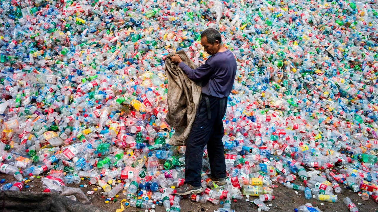 New super-enzyme eats plastic bottles six times faster   Environment   The  Guardian