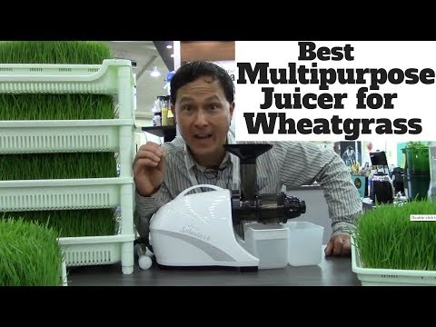 Best Multipurpose Juicer for Juicing Wheatgrass