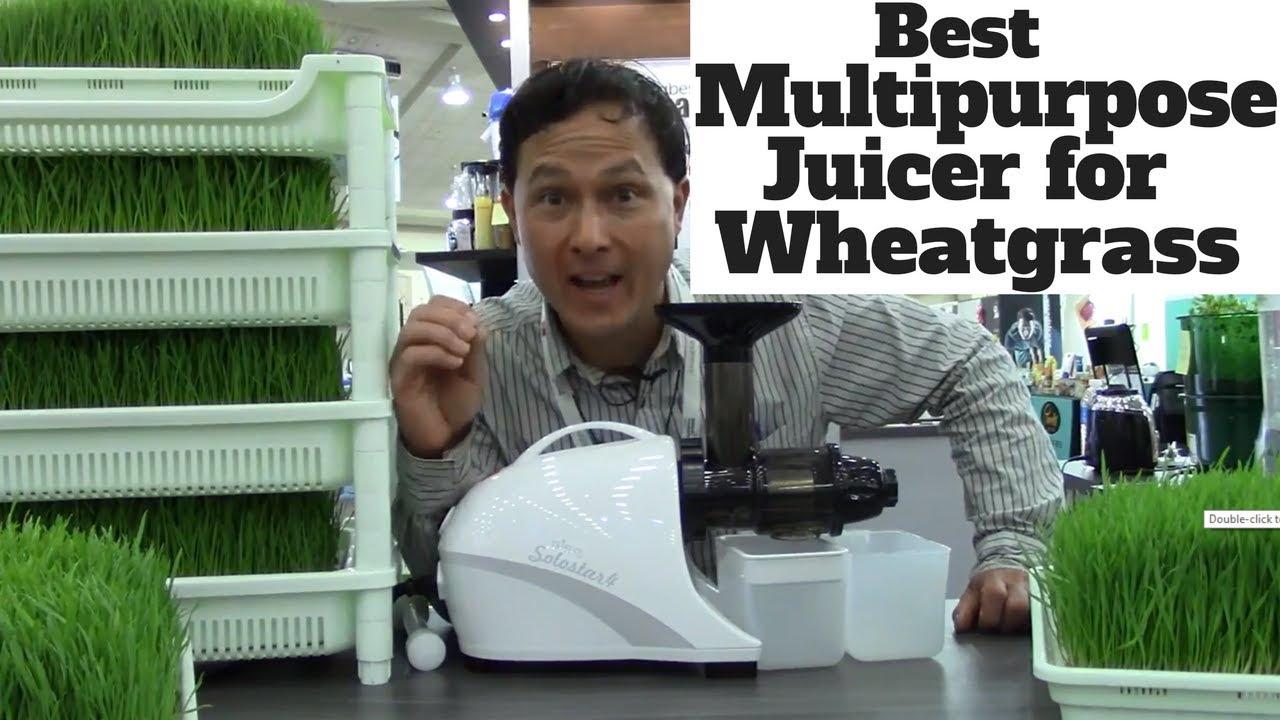 Best Multipurpose Juicer for Juicing Wheatgrass