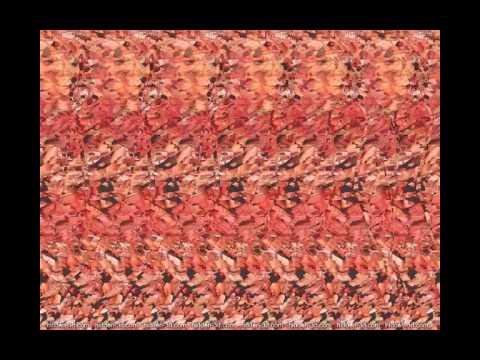 Imagenes 3d sin lentes youtube - Para ver fotos ...