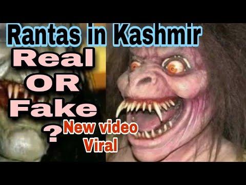 Download Raantas in Kashmir 😟 Real or Fake  ?Viral Video Clip - Dekhlo Sab aur Jaan Lo Sach !