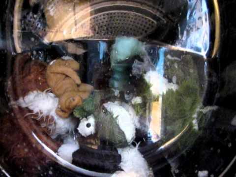 stuffed animals in a washing machine...