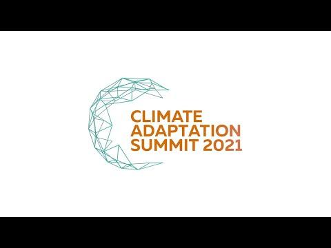 Adaptación al cambio climático y el sector privado, evento paralelo Chile, 25 enero 2021