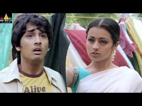 Nuvvostanante Nenoddantana Movie Trisha & Siddharth Comedy   Telugu Movie Scenes   Sri Balaji Video