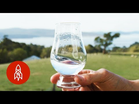 wine article Making Vodka From Sheep