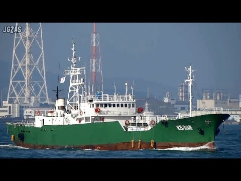 [船] TAELIM JASMINE Fish carrier 鮮魚運搬船 Kanmon Strait 関門海峡 2013-NOV