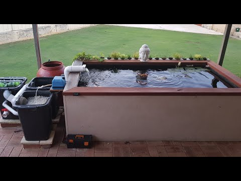 My Koi Pond And Filter Setup
