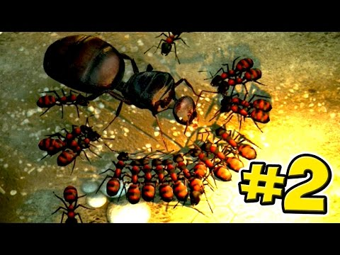 The Ant Queen! - Empires Of The Undergrowth - Ep2