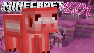 Minecraft | CANDY PIG PROBLEM.. | Diamond Dimensions Modded Survival #201