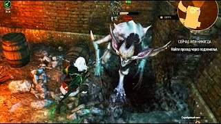 The Witcher 3 Wild Hunt - Катакан  Как убить Gameplay