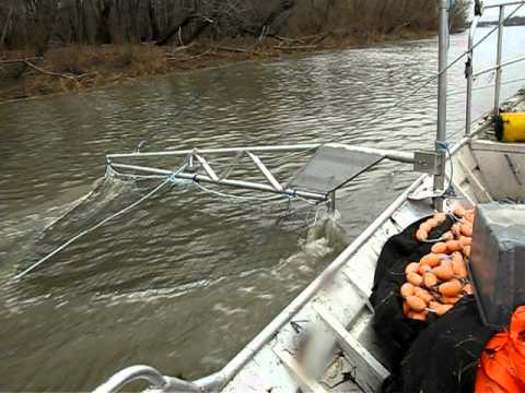 Downstream sampling with Paupier Prototype for Asian carp on Iillinois river