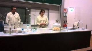 Krampusvorlesung Chemie TU Graz (01v15)