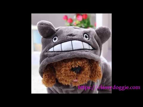 Classy Doggie - Warm Dog Cartoon Fall Winter Outfit
