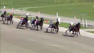 Vidéo de la course PMU PRIX LINDENOORD (MERWESTAAL TALENT CHALLENGE)