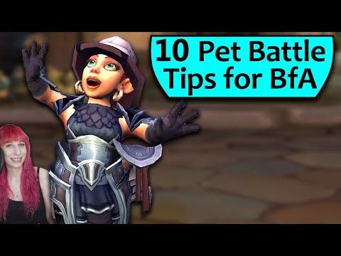 Top 10 BfA Pet Battle Tips
