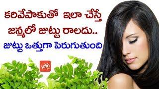 కరివేపాకుతో ఇలా చేస్తే జన్మలో జుట్టు రాలదు   Tips to use Curry Leaves to Stop Hair Loss   YOYOTV